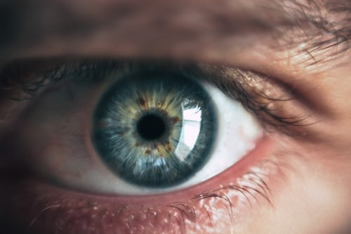 What are the tips for maintaining your eyesight ?